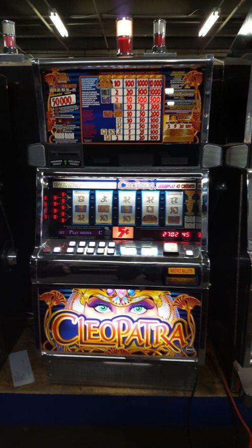 CleopatraCanadian499